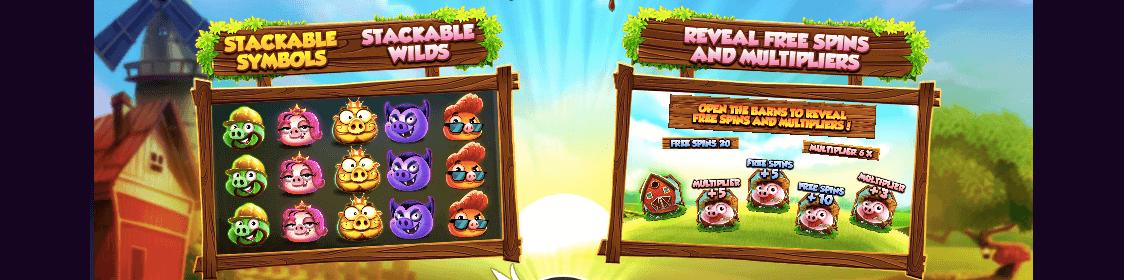 Bonus och free spins i 7 Piggies